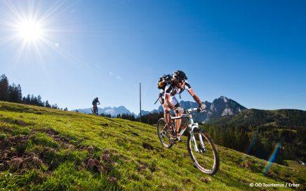 Mountainbiking Mondseeland - Foto: © OÖ Tourismus / Erber