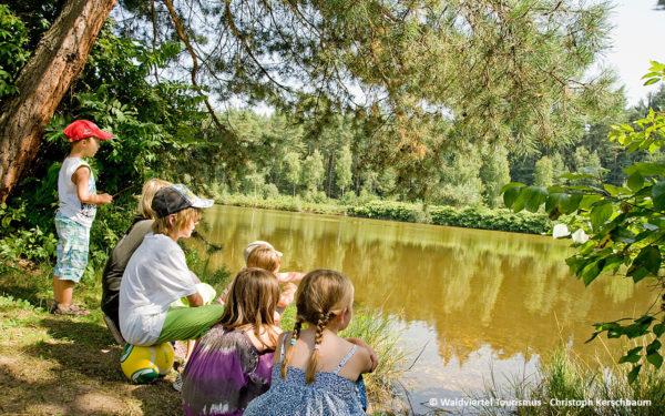 Jugendherberge Neu Nagelberg idyllisch am Teich - © Waldviertel Tourismus / Christoph Kerschbaum