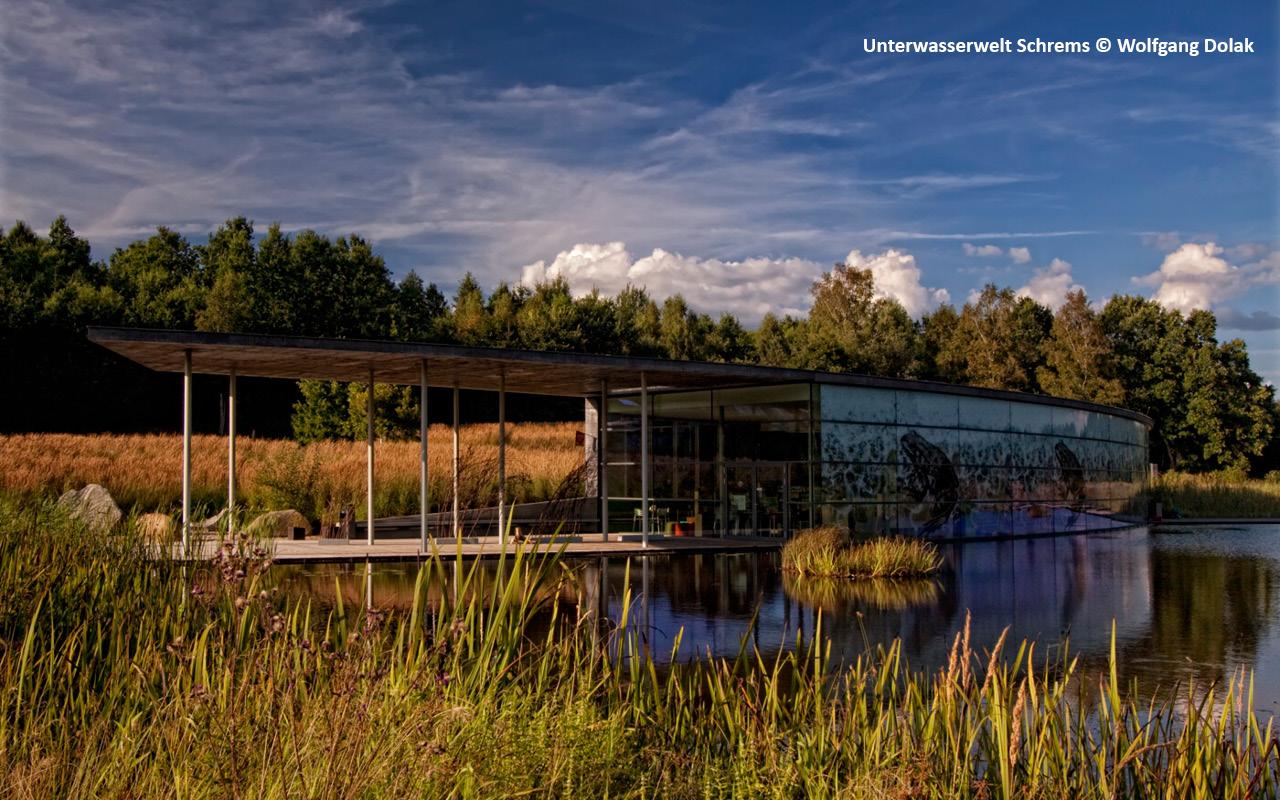Neu Nagelberg - Unterwasserwelt Schrems - © Wolfgang Dolak